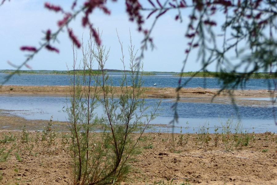 ecotourism1