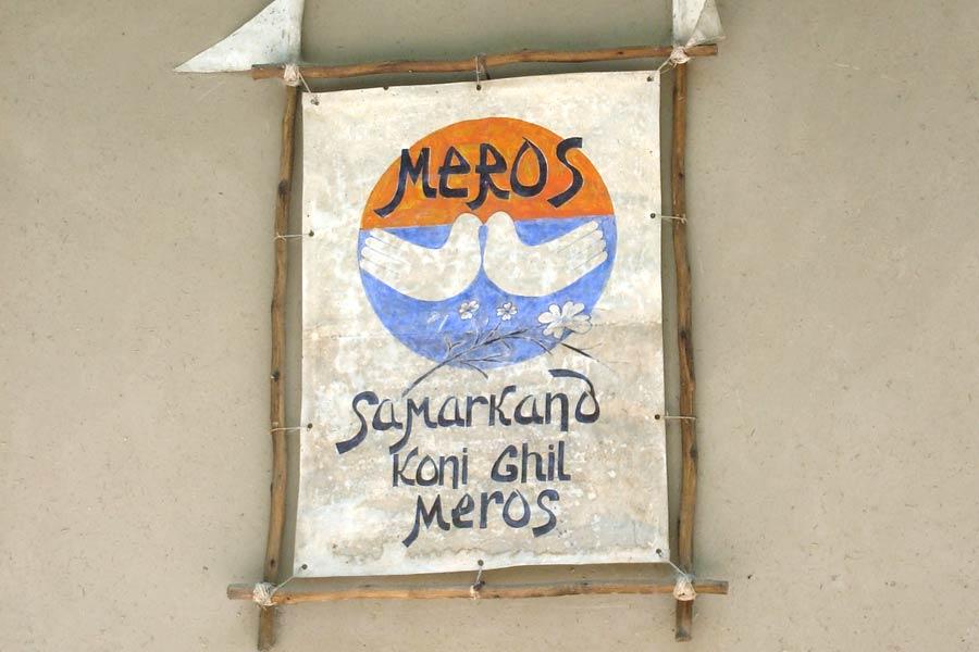 meros-paper1