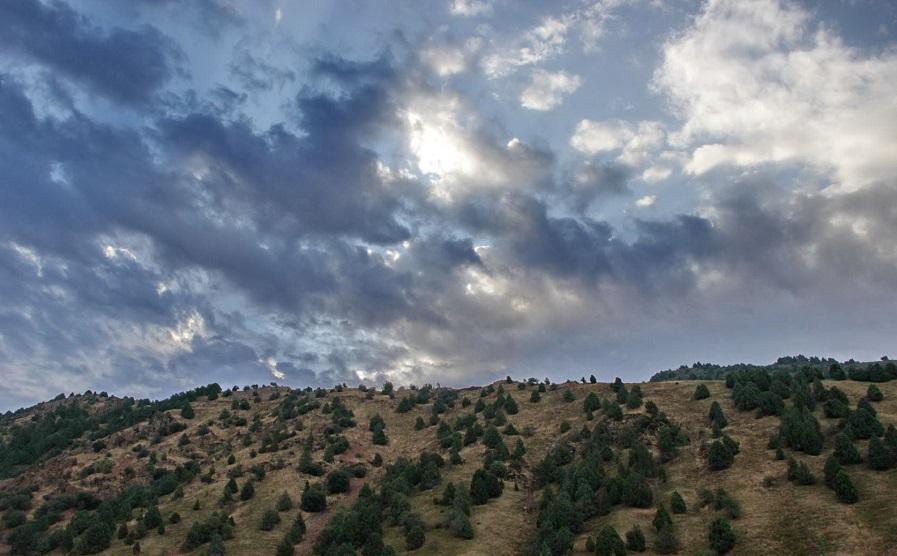 Yangiabad mountain tour