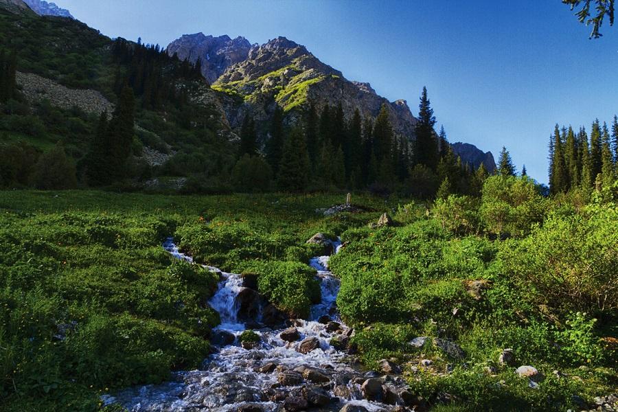 Ala-Archa Gorge and Bishkek Tour